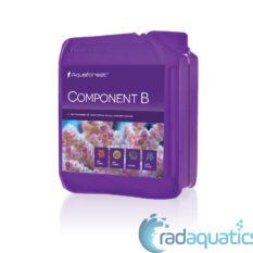 Component_B_2000_NEW